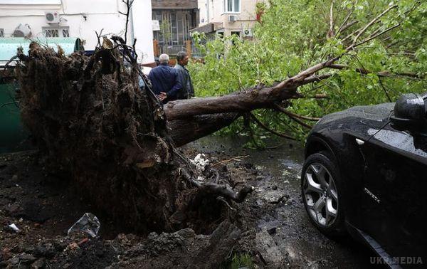 Джерело: Кількість жертв урагану вМоскві зросла до11