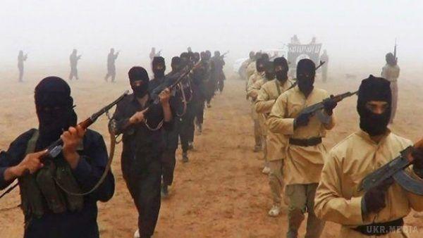 Можуть готувати теракти в Європі: Інтерпол оприлюднив список із 173 смертників ІДІЛ