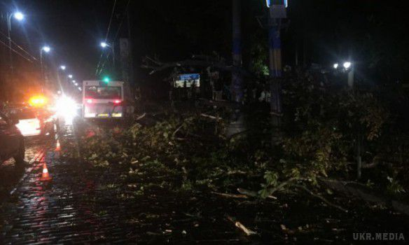 Негода вУкраїні знеструмила майже 500 населених пунктів,— ДСНС