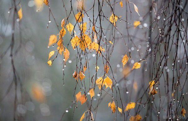 Прогноз на30 жовтня. Синоптики попереджають про сніг тахуртовини