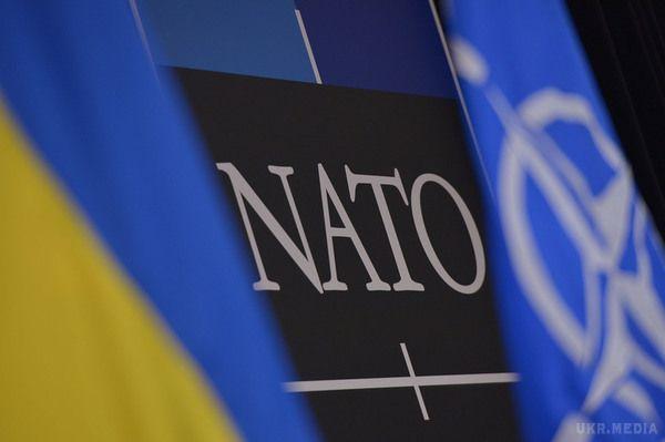 Вступ доНАТО підтримує 62% українців,— опитування