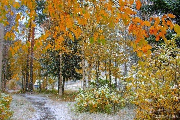 Завтра узахідних областях України очікується невеликий сніг