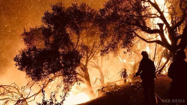 Пожежі на півдні Каліфорнії охопили майже сто тисяч гектарів