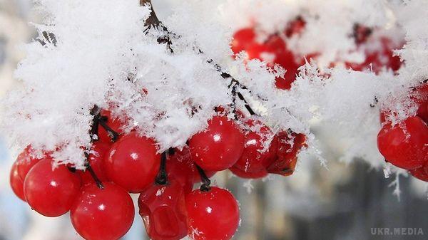 Погода насьогодні: вУкраїні дощі змокрим снігом, температура до +13