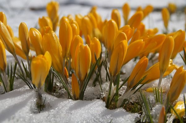 Прогноз погоди вУкраїні: без опадів, але прохолодно