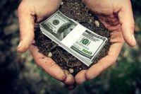 В Україні почала дорожчати оренда землі