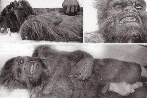 У США в лісах Джорджії мисливці виявили тіло снігової людини. Мисливці розповіли, коли вони виявили єті, то він був ще живий, але у нього на тілі помітили велику кількість ран, від яких він швидше за все і помер.