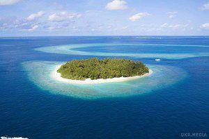 Безлюдний острів в Тихому океані вчені визнали найбруднішим на Землі. Вчені визнали безлюдний кораловий острів Хендерсон в південній частині Тихого океану найбруднішим на Землі.