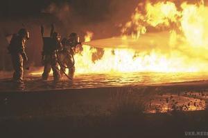 В Одесі на пляжі сталася пожежа, є постраждалий (фото, відео). На Ланжероні в Одесі сталася пожежа.