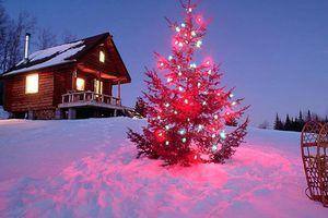 Якою буде погода на Новий рік 2018: прогноз погоди на 1 січня. В Укргідрометцентрі розповіли, якою буде погода в Києві та Україні 1 січня 2018 року.