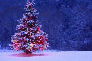 Прогноз погоди в Україні на сьогодні 9 січня: опадів не очікується. В Україні в найближчу добу без опадів, лише на Прикарпатті, у Карпатах та на крайньому півдні вночі невеликий мокрий сніг.
