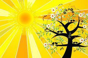 День літнього сонцестояння в 2018 році: історія, традиції, магія. Сонце в зеніті, сонячне коло висить, завмирає над нашими головами і ніби не збирається нікуди йти. Так починається день літнього сонцестояння, найдовший день у році. У 2018 році день літнього сонцестояння припадає на 21 червня, о 10:07.